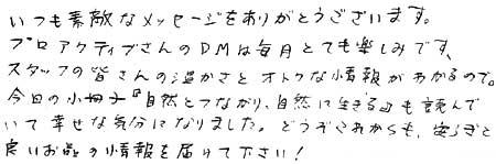 DM・小冊子